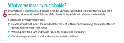 What do we mean by sustainable
